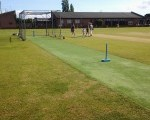 New Artificial Cricket Wicket